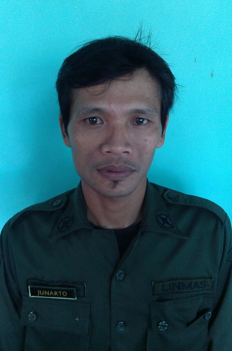 Junarto